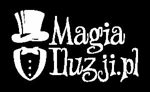 Magia Iluzji - Marcin Gogołowicz